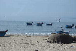 Quảng Bình: 512 trường hợp kê khống thiệt hại môi trường biển gần 9 tỷ đồng ở một xã