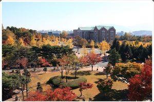 'Lạc bước' đến ngôi trường tuyệt đẹp xuất hiện trong hơn 100 bộ phim Hàn nổi tiếng