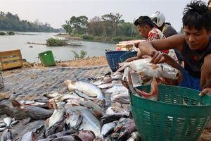 Tham vọng thủy điện của Lào đe dọa các làng chài Mê Kông