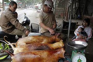 Hà Nội vận động không ăn thịt chó: Ai ủng hộ?