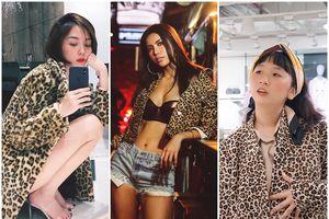 Tóc Tiên, Minh Tú, Chi Pu cùng hàng loạt tín đồ thời trang 'điên đảo' trở lại với họa tiết da báo