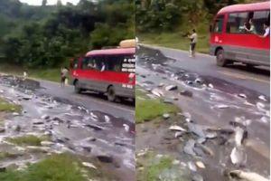 Xe tải lật nghiêng, hàng tấn cá nhảy tanh tách trên quốc lộ