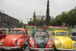 Volkswagen có ý định chấm dứt chế tạo biểu tượng xe hơi Beetle