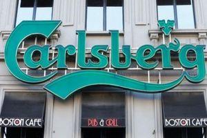 Carlsberg có thể mua thêm 17% cổ phần tại Habeco