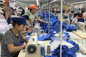 Các khu công nghiệp tại Thừa Thiên Huế đang 'hút' nhà đầu tư