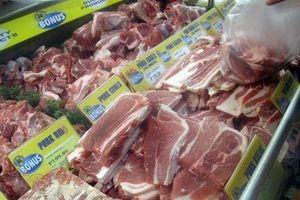 Dừng nhập khẩu thịt lợn từ nhiều quốc gia có dịch tả lợn Châu Phi