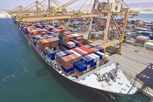 Kinh nghiệm nước ngoài: Nhà nước không nhất thiết phải nắm cổ phần chi phối cảng biển