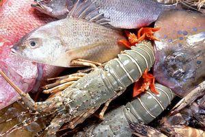 Hướng dẫn làm sạch hải sản nhanh, tiện, đẹp mắt