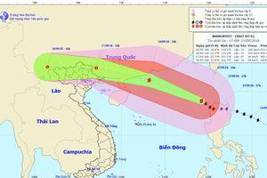 Khẩn trương triển khai các biện pháp ứng phó bão số 6