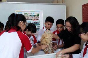 Mô hình Câu lạc bộ khoa học – Bước đệm tạo ra những học sinh toàn diện