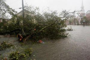 Bão Florence vào Mỹ, đã có ít nhất 5 người thiệt mạng