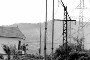 Người dân nơm nớp sợ đường điện đổ đè lên nhà khi mưa bão