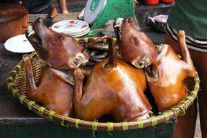 Vì sao 'thủ phủ' thịt chó Nhật Tân biến mất bí ẩn?