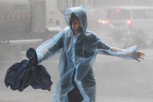 Người Hong Kong giữa tâm bão Mangkhut: 'Kính cửa sổ chỉ chực vỡ ra'