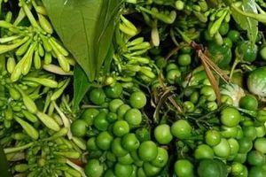Nộm hoa đu đủ trộn cà rừng- đặc sản Tây Bắc, bùi, béo, thơm lừng