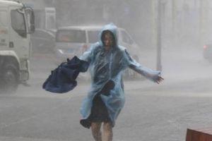 Kinh hoàng sức tàn phá của siêu bão Mangkhut tại Hong Kong