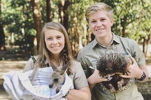 Chương trình mới của gia đình 'thợ săn cá sấu' Irwin