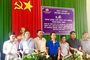 Trao tặng 46.500 cây sâm Ngọc Linh giống tại vùng cao Kon Tum