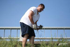 Tình nguyện viên Mỹ dọn rác trên tuyến đê xung yếu của TP. Vinh