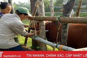 Hơn 30.000 gia súc, gia cầm được tiêm vắc xin phòng bệnh