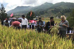 Sa Pa, Lào Cai: Lễ hội Ngày mùa trên ruộng bậc thang Lao Chải