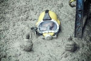 Tâm sự của một thợ lặn bể phốt chuyên nghiệp