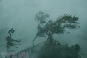 Bão Mangkhut đổ bộ vào Quảng Đông (Trung Quốc)