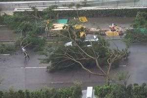 Nhân viên khí tượng gồng mình đo tốc độ gió trong bão