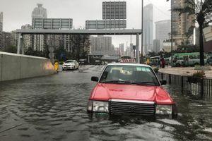 Người Hong Kong vật lộn với đường sá đi làm sau bão Mangkhut
