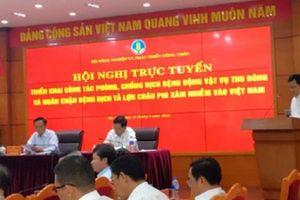 C.P cùng ngành nông nghiệp Việt Nam ngăn chặn dịch tả lợn châu Phi