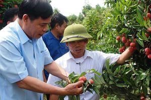 Nông nghiệp Việt Nam đang đối mặt nhiều rủi ro, thách thức