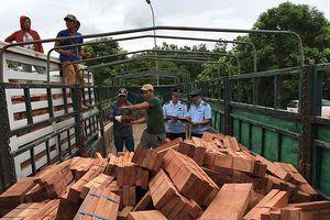 Đề xuất phạt hành chính vụ 70.000 m3 gỗ ngoại nghi né kiểm dịch