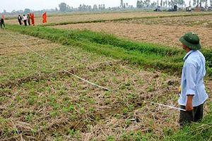 Cần quyết liệt bảo vệ đất nông nghiệp