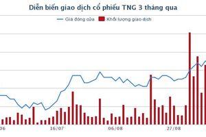 TNG: Lãi ròng 8 tháng đạt 118 tỷ đồng