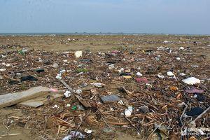 Rác bủa vây bãi biển Diễn Thành