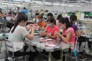 Doanh nghiệp FDI đóng góp 22% tổng thu ngân sách của Long An