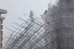 Siêu bão Mangkhut quật ngã người đi bộ, làm bật giàn giáo tòa nhà 7 tầng