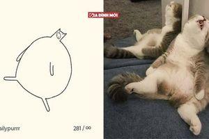 Loạt tranh vẽ mèo của nghệ sĩ tối giản nhưng chính xác, IQ trên 200 mới tưởng tượng ra