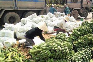 Giao thương qua cửa khẩu tại Quảng Trị: Nông sản gặp khó