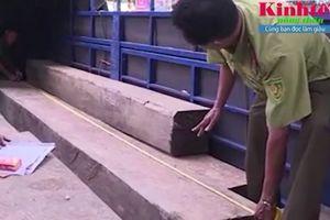 Đắk Lắk: Bắt giữ xe tải vận chuyển 31 khúc gỗ lậu