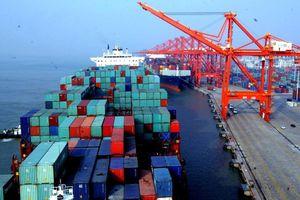 Vụ Cảng Quy Nhơn: Vinalines chuyển nhượng 75,01% cổ phần thuộc sở hữu Nhà nước trái thẩm quyền