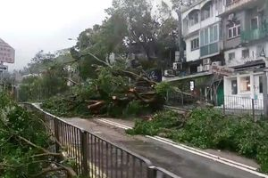 Siêu bão Mangkhut tàn phá Trung Quốc, Philippines