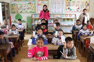 Chương trình sữa học đường: Băn khoăn chất lượng, giá cả