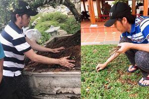 Hoài Linh tự tay dọn dẹp nhà thờ trước ngày giỗ tổ