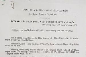 Hà Giang: Uẩn khúc vụ án buôn bán người trên cột mốc 379?