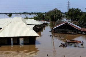 Nigeria: 100 người thiệt mạng do lũ lụt tại 10 tiểu bang