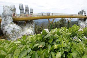 Phó Chủ tịch UBND TP Đà Nẵng: 'Cầu Vàng tạo nên một sản phẩm du lịch mới'