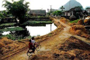 'Xóm Bờ Giậu' và những câu chuyện đầy nhiệm màu về làng quê