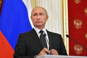 Phản ứng của ông Putin trước 'thảm kịch' Il-20 và làn sóng dư luận trái chiều