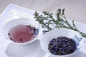 Công dụng Trà Oải Hương - Trà hoa Lavender
